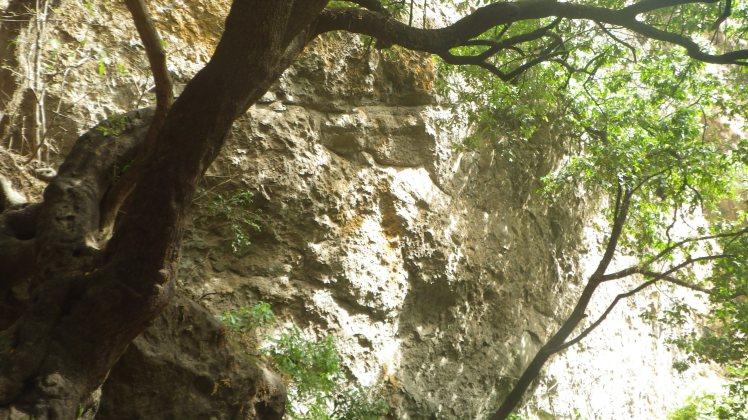 mexico 2012 125